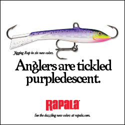 Rapala Jigging Rap Purpledescent 250x250