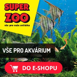 Akvaristika v Superzoo.cz