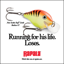 Rapala Scatter Crank Shallow 250x250