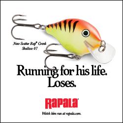 Rapala Scatter Crank Shallow 250x250