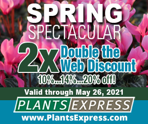 Spring Spectacular 2X! Up to 20% off from Plants Express