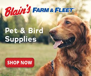 Image for Shop Pet Care & Wild Bird Care Online at Blain's Farm & Fleet
