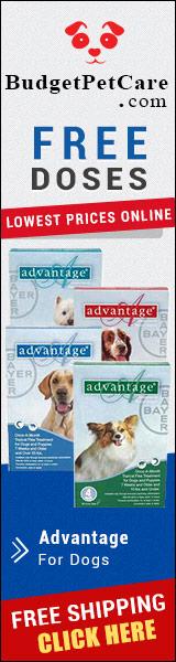 Buy Cheapest Advantage Flea Treatment For Dogs Online