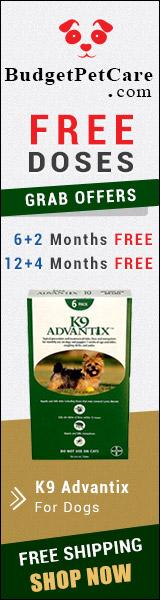 Buy Cheap K9 Advantix For Dogs Online