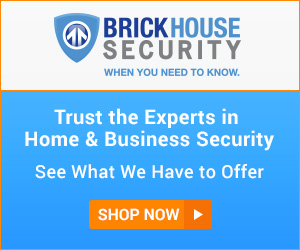 Licensed Security Professionals For Home and Business