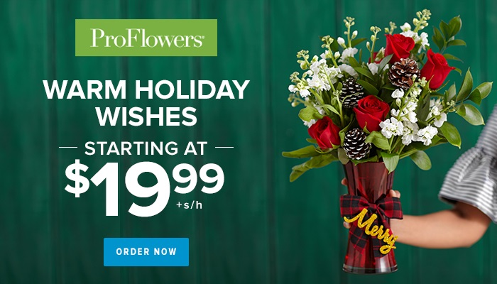 Holiday Flowers & Gifts from only $19.99 at ProFlowers 700x400