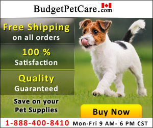 Image for Pet Supplies & Health Products Online Store with Free Shipping in USA
