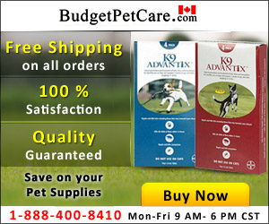Image for Online K9 Advantix For Dogs at Cheapest Price & Free Shipping