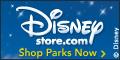 120x60 Disney Parks Store