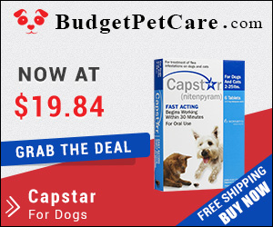 Buy Cheap Capstar Flea for Small Dogs Online with Free Shipping in USA