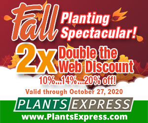 Image for Fall Planting Spectacular 2X 2020