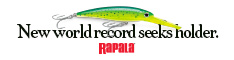 Rapala World Record 234x60