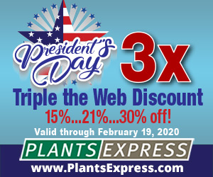 President's Day 3x -- Triple Your Internet Discount with Plants Express!