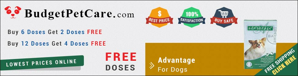 Buy Online Cheap Advantage For Dogs