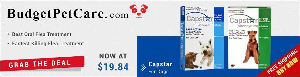 Novartis Capstar For Dogs Online