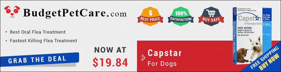 Buy Cheap Capstar Flea for Small Dogs Online