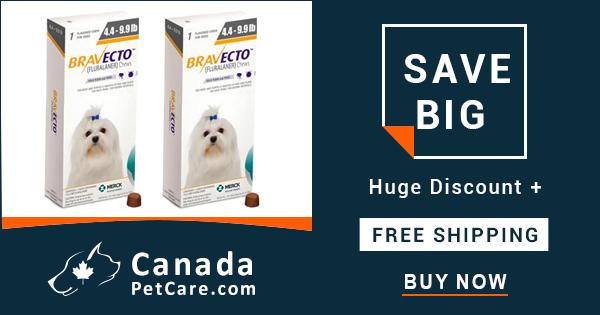 Buy Bravecto Online