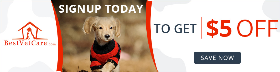 ACT NOW to Save $5 OFF on Your Order! Register Today at BestVetCare.com
