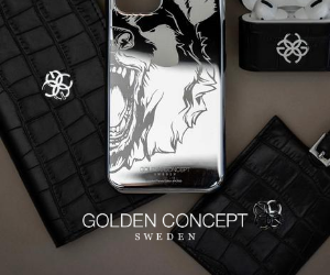 Golden Concept Silver and black accessories