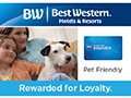 Best Western - Pet Friendly