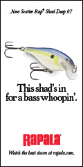 Rapala Scatter Shad Deep 120x240