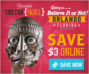 Skeleton at Ripley's Believe it or Not. things to do in Orlando other than Disney