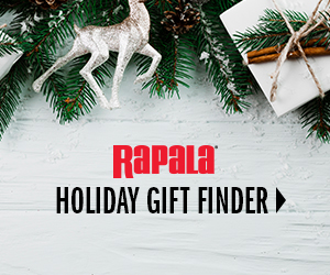 Gift Finder 300x250