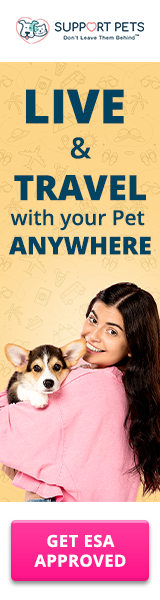 160x600 Live & Travel with Your Pet