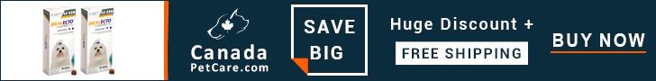 Buy Online Bravecto Flea & Tick Chewable @ $32.96 Only