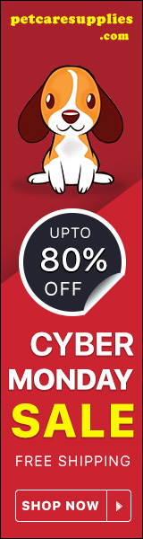 Save Upto 80% Off on Cyber Monday Sale