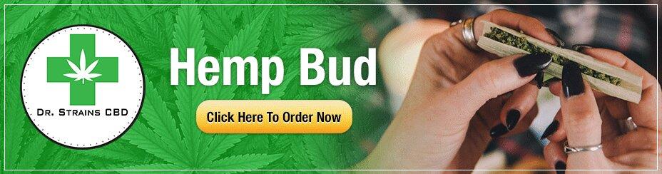 Dr Strains CBD coupon for Hemp Bud