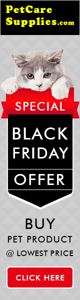 Black Friday Special Offers