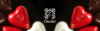 zchocolate logo