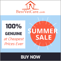Image for Summer sale 2020