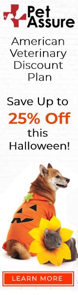 Pet Assure Halloween 160x600 banner
