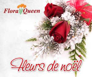 Fleurs De Noel