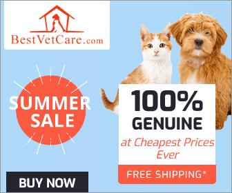 Best Vet Care - Summer sale 2020