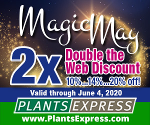 Magic May 2X! Up to 20% off from Plants Express