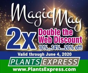 Image for Magic May 2X 2020