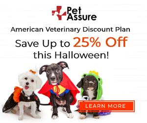 Pet Assure Halloween 300x250 banner