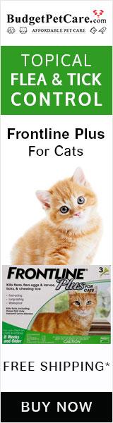 Frontline Plus Cats Super Sale