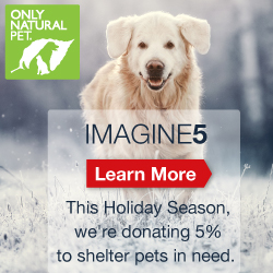 Donation  Dog PETS