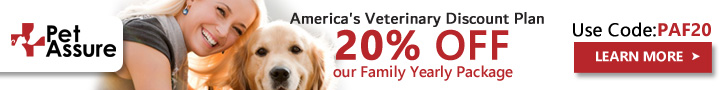 20% OFF Our Family Yearly Package 728x90