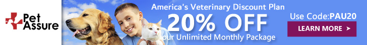 20% OFF Our Unlimited Monthly Package 728x90