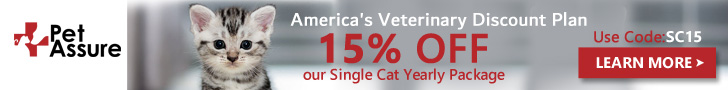 15% OFF Our Single Cat Yearly Package 728x90