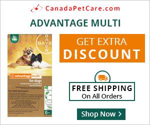 Fast Flea Control & Prevention at 10% Extra Off + Free Shipping @ CanadaPetCare.com