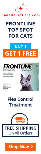 Buy 4 Get 4 Doses Free of Fronline Cats + 10% Extra Off & Free Shipping