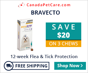 Image for Bravecto Super Offer: Save $20 Extra + 10% Discount & Free Shipping