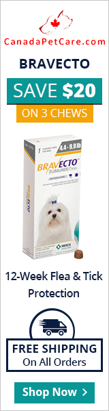 Save $20 Off for Bravecto 3 Chews + 10% Extra Off & Free Shipping on All Orders