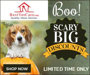 Best Vet Care - Halloween Sale